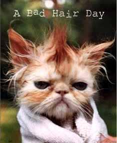 badhair day